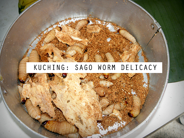 sago worm, kuching, sarawak, malaysia, weekend, weekend market, serikin market, happy, weird, fun, things to do in kuching, fun things to do in kuching,  what to do in kuching, indonesian and malaysian border, indonesia and malaysia border, weird food,