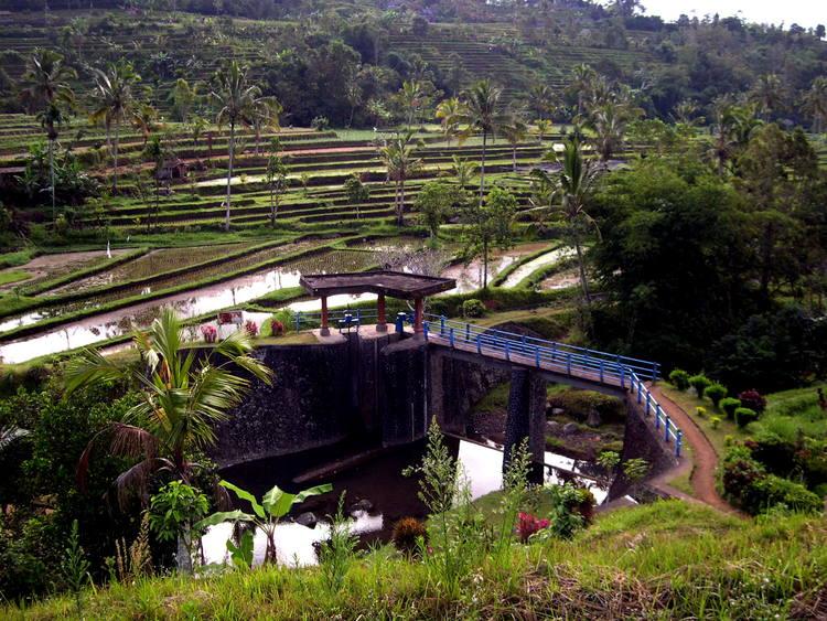 Filosofi Sistem Subak Di Bali