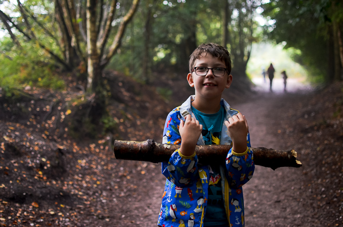 Haldon Forest, Exploring Devon, Forestry England