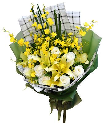 bo hoa ly