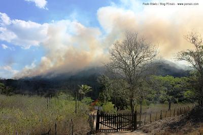 Resultado de imagem para queimadas que pode prejudicar o municipio TRIUNFO PE