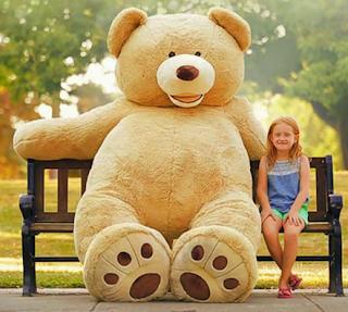 Asal Muasal Mainan Klasik Amerika Teddy Bear