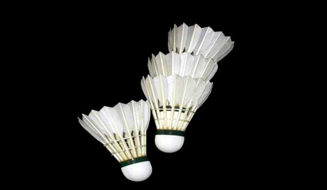 What is the name of the sport in which a Shuttlecock is used?