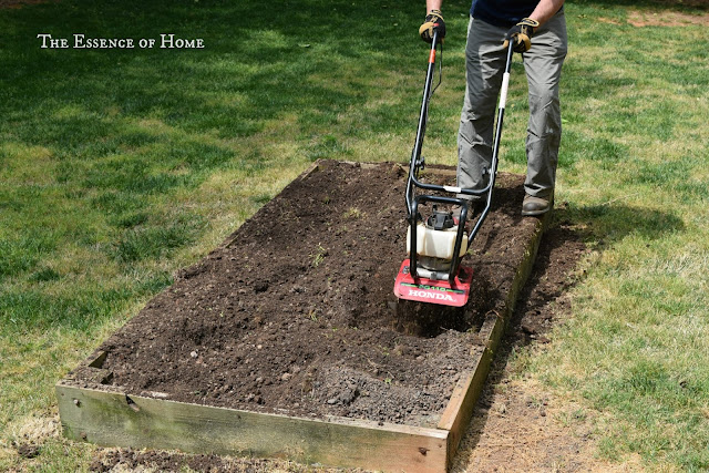 How To Start a Raised Bed Vegetable Garden