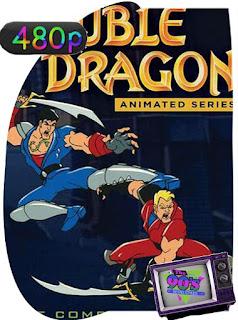 Double Dragon La serie Animada Temporada 1 [480p] Latino [GoogleDrive] SilvestreHD