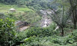 taman hutan tropis bengkulu