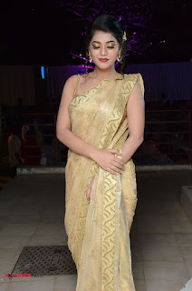 Actress Yamini Bhasker Pictures in Saree at anic Movie Audio Launch  0036.JPG