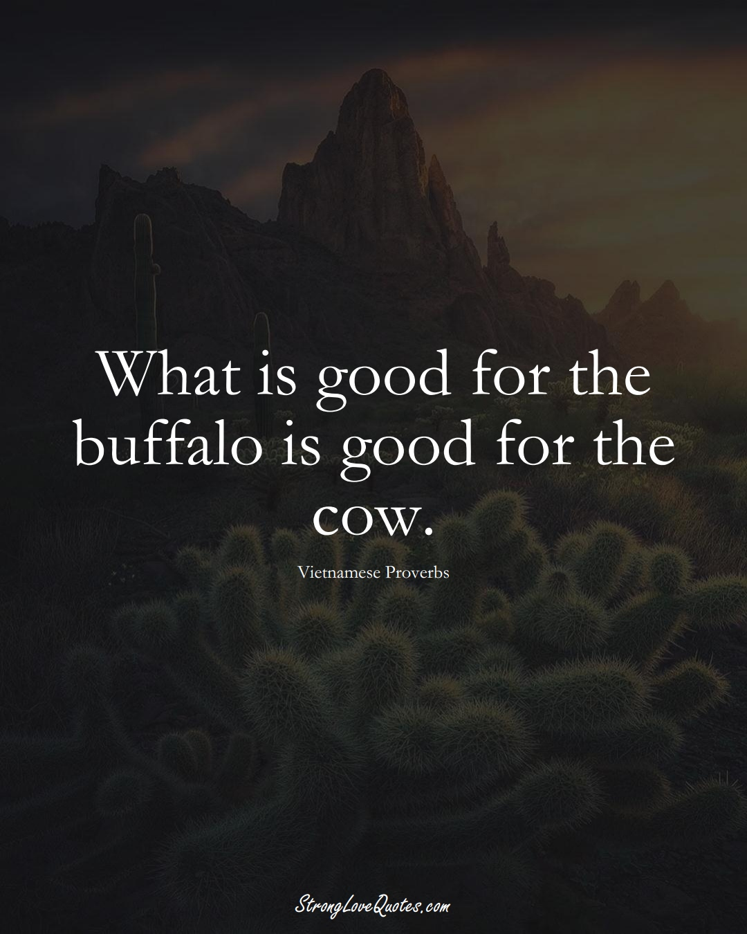 What is good for the buffalo is good for the cow. (Vietnamese Sayings);  #AsianSayings