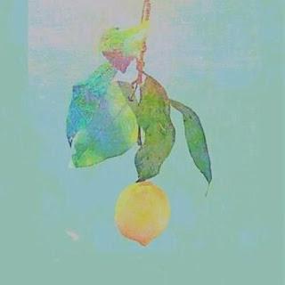 Lirik Lagu Lemon Bahasa Indonesia