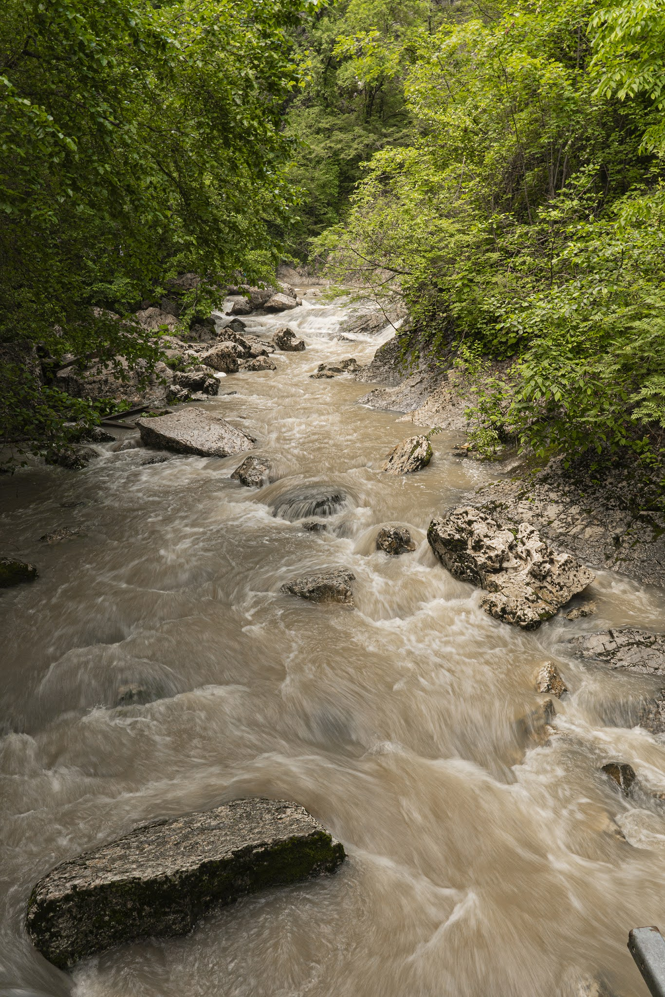 Mountain river national park sochi nature forest photo Igor Novik