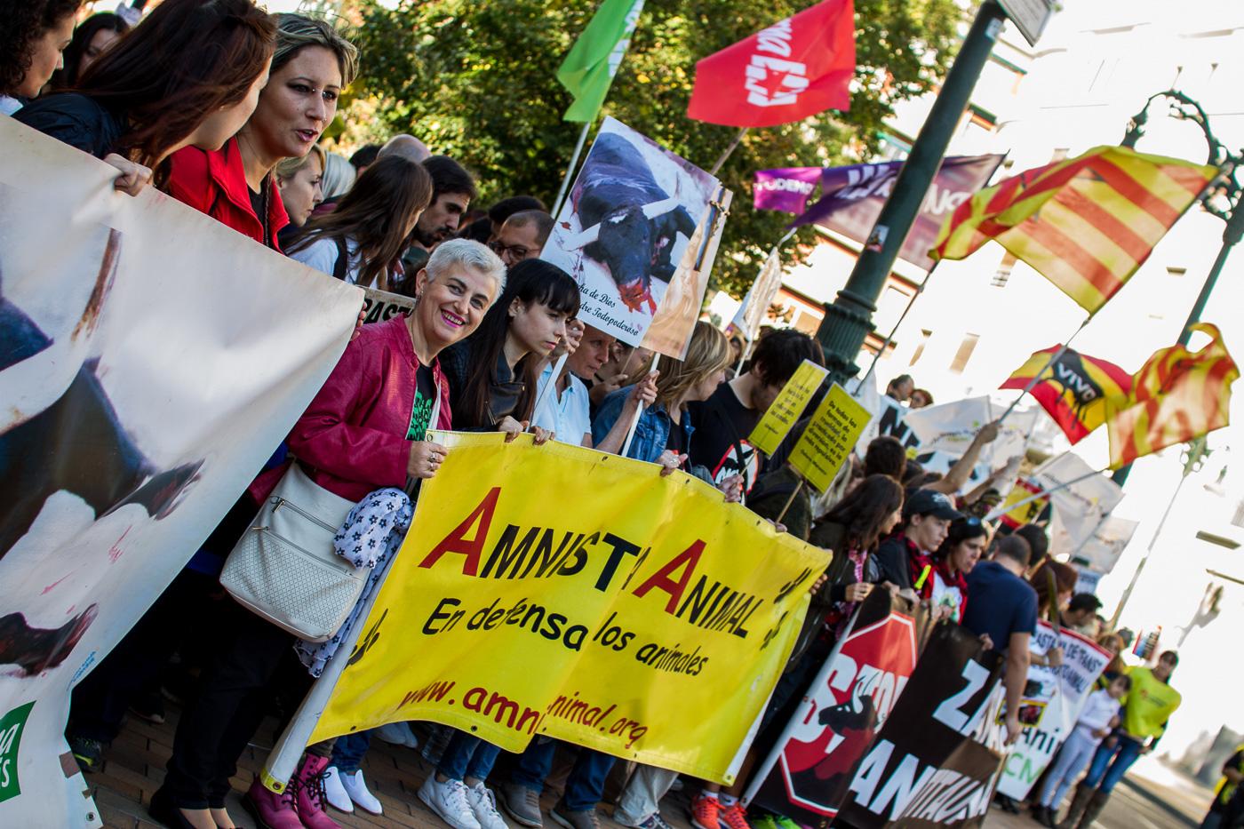 Fiestas del Pilar 2016 Zaragoza - Manifestación Antitaurina - AntiBullfight Zaragoza
