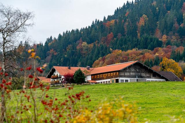 Talwanderung Inzell | Herbstwandern im Chiemgau | Moor-Erlebnis-Pfad und Reifenrutsche Kesselalm 10