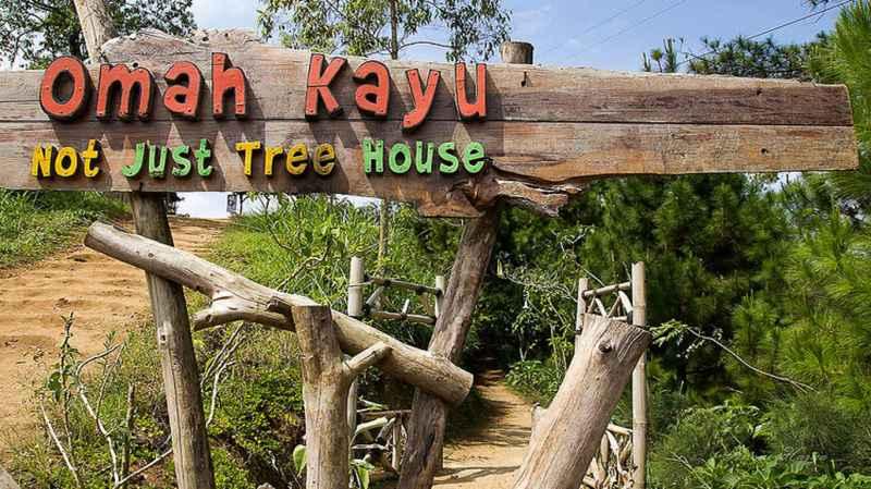 Wisata Rumah Pohon Omah Kayu di Batu