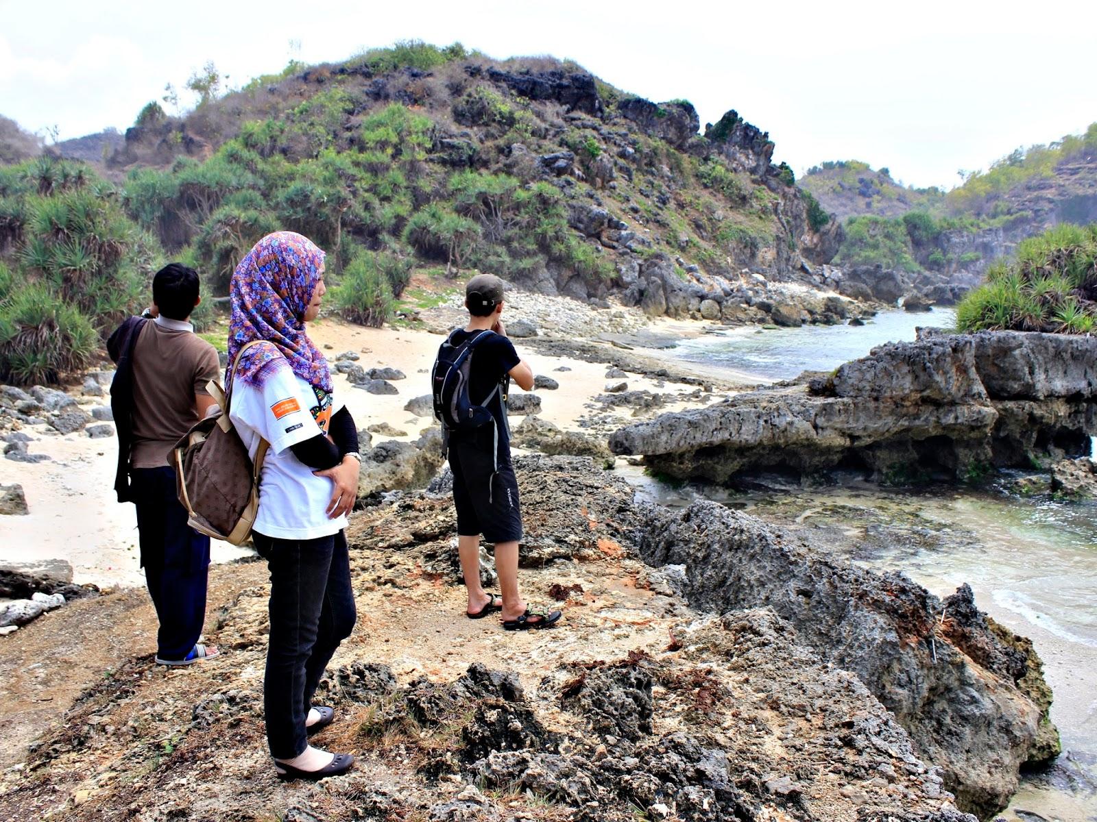 rumput laut pantai ngrumput gunungkidul yogyakarta