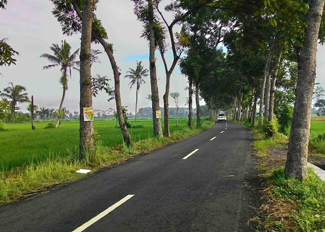 Jalan Bagus, Akses Menuju Desa Penghasil Kapol di Pangandaran Jadi Lancar