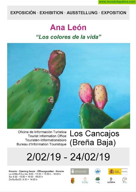 """LOS CANCAJOS: """"Los Colores de la Vida"""""""