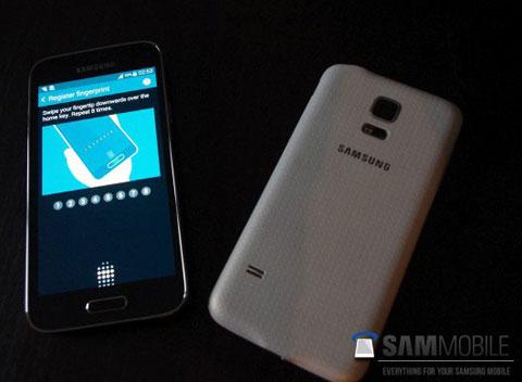 Inikah Samsung Galaxy S5 Mini?