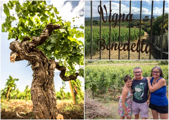 Wine blog roll il blog del vino italiano tenuta for Grandi piani di una casa da ranch di storia
