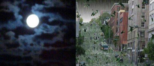 Chuva de girinos no Japão: girinos, sapos e peixes caem do céu e cobrem casas e plantações nas cidades de Hiroshima e Iwate.
