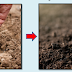 How to Convert Death Soil in to Fertile Soil within 14 Days