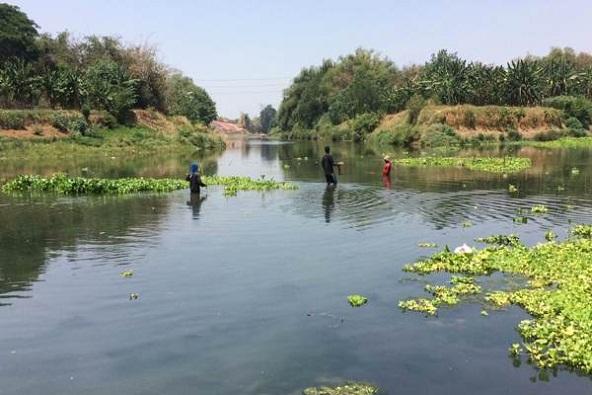 Dinas Lingkungan Hidup Jateng Akan Bahas Limbah Etanol CIU Di Sungai Bengawan Solo