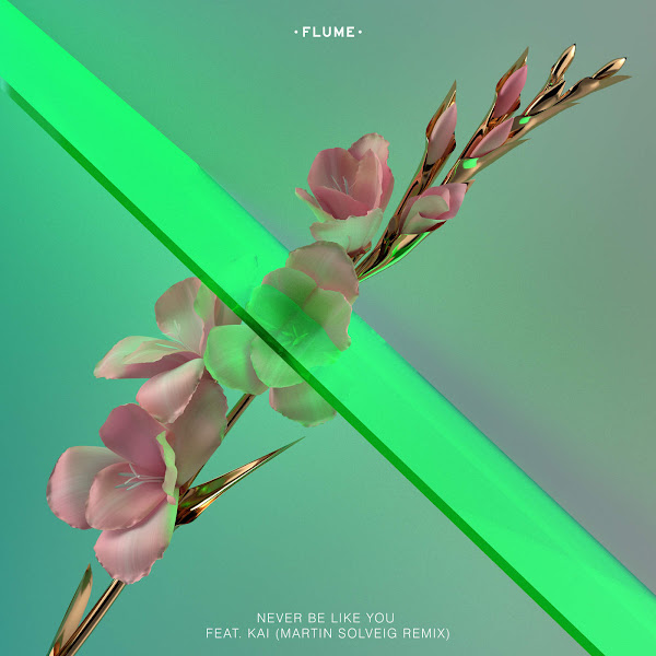 Flume - Never Be Like You (feat. Kai) [Martin Solveig Remix] - Single Cover