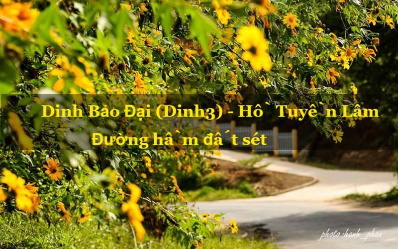 Cung đường Dinh 3 – Hồ Tuyền Lâm – Đường Hầm Đất Sét – ảnh toursdulichdalat