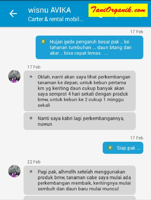 Percakapan kami dengan Pak Nugroho di Kebumen