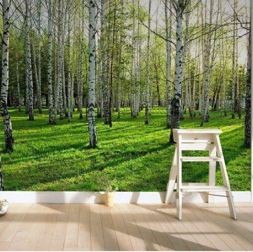 tapet skog fototapet björktapet trädstammar sommar björkstammar