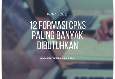 12 formasi cpns 2021 yang paling banyak membutuhkan dan kualifikasi pendaftarnya