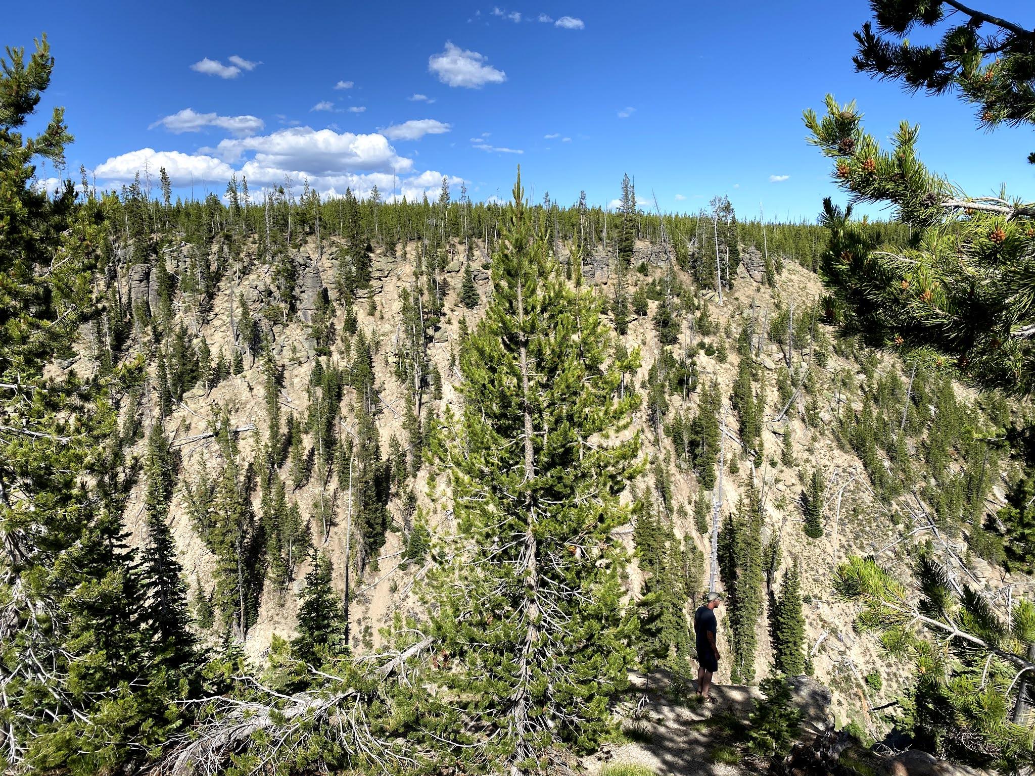 Yellowstone National Park | Biblio-style.com