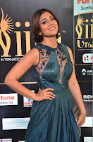 Shriya Saran in Beautiful Transparent Dark Gown IIFA Utsavam Awards 2017 042.JPG