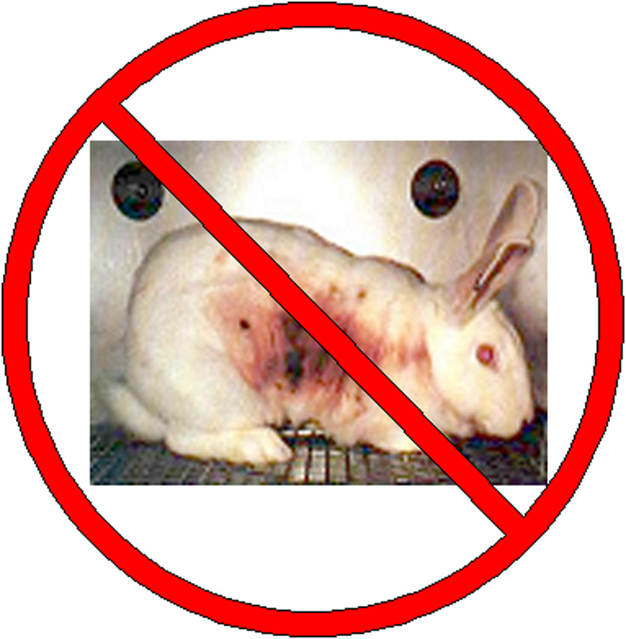 Clinical testing of products on animals should be banned