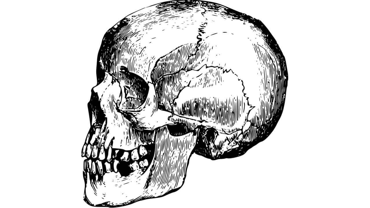 Selain Covid-19, 7 Wabah Ini Penyebab Kematian Terbesar!