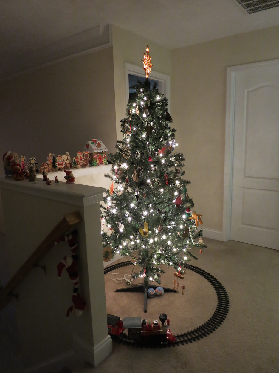 unser leben in den usa hund krank und weihnachtsbaum. Black Bedroom Furniture Sets. Home Design Ideas