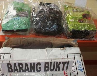 Polda Kepri Amankan Teh Cina Berisi 3.147 gram Sabu Tujuan Makassar