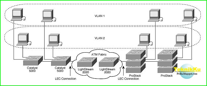 Perbedaan Mendasar Jaringan LAN Dan VLAN