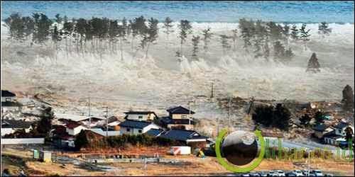 Gempa Pantai Timur Pulau Honshu, Jepang