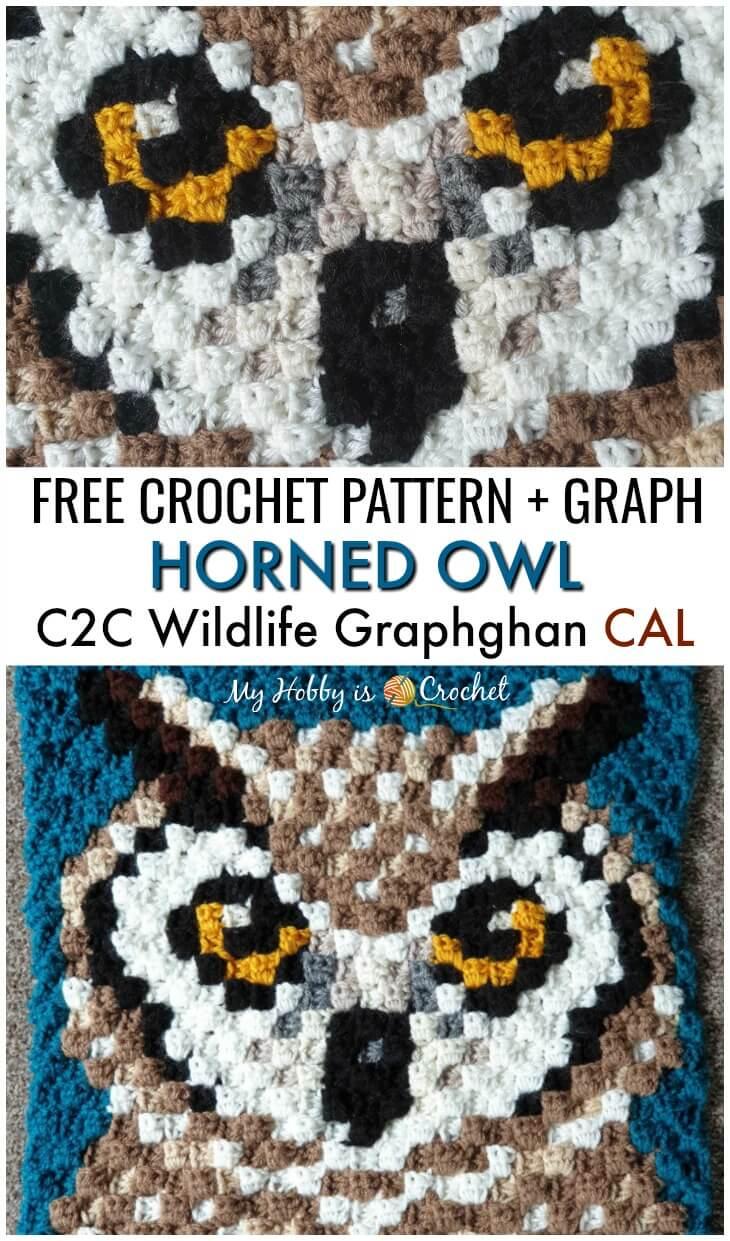 Horned Owl C2C Square