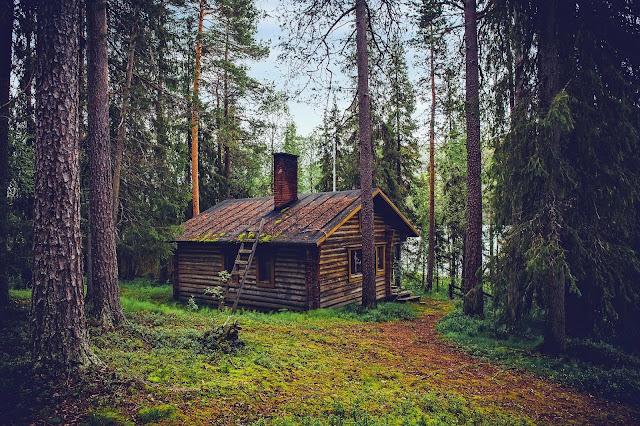 Mökki, mettä ja vesi <3