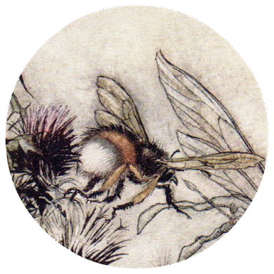 Close up of Arthur Rackham's watercolour of a bumblebee.