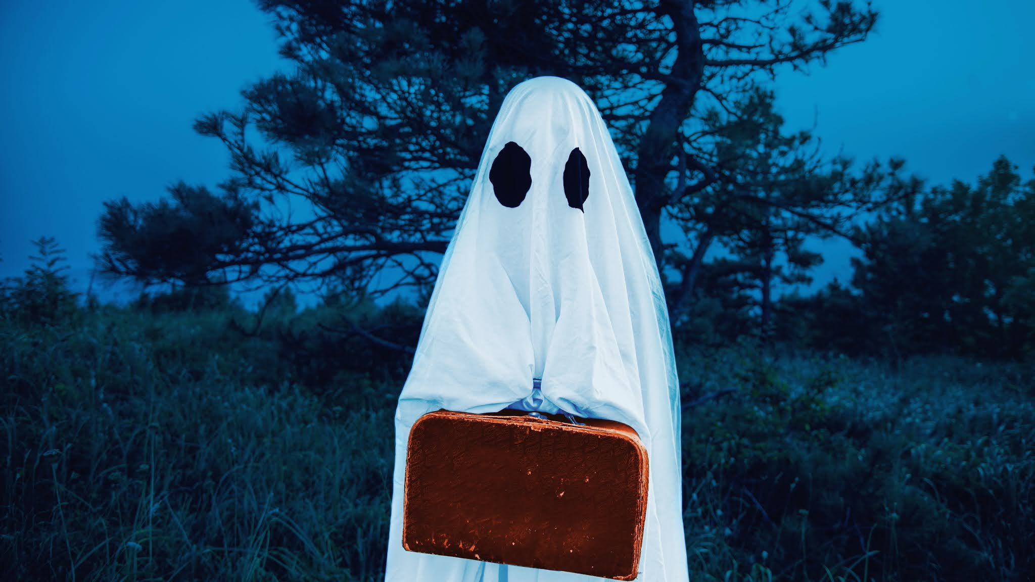 ghost holding a suitcase