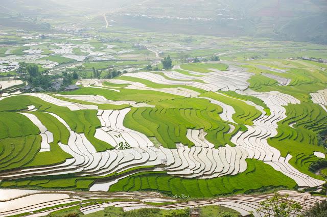 Best Vietnam Photo Trip For Rice Terrace Photography