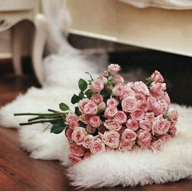 كُن مُزهِراً غابَ الزهرُ بينَ 10899055_16163789619