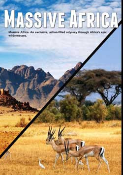 Massive Africa (2019)