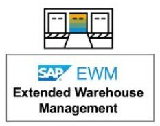 SAP EWM Storage control - Consultoria-SAP