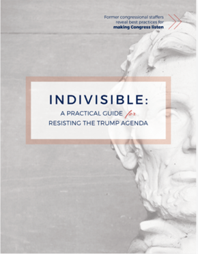 Download the Indivisible Guide
