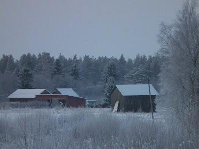 Pellot, lato. harmaa talvipäivä