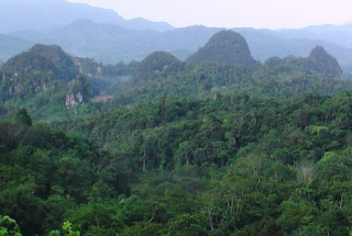 Hutan Bukit Barisan angker