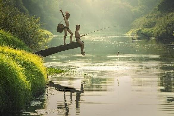 """Ada Air Ada Ikan"" Arti, Pengertian Dan Contoh Kalimat"